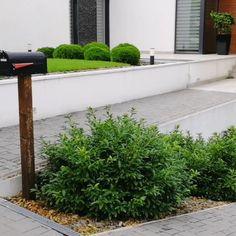 """12 kedvelés, 0 hozzászólás – SD KERT (@sdkert) Instagram-hozzászólása: """"#gardening #gardendesign #kerttervezés #sziklakert #kert #rocks #sdkert #sdkertepites…"""" Sidewalk, Plants, Instagram, Side Walkway, Walkway, Plant, Walkways, Planets, Pavement"""