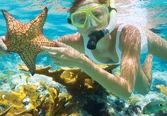 świetna oferta aby zwiedzić całe Hawaje! Dodatkowe atrakcje wzbogacają wycieczkę oraz gwarantują niezapomniane przeżycia. Pstrykając fotki z wyjazdu można wzbogacić nimi pinterest :) na pewno znajdą one duże zainteresowanie.