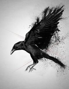 Nice Crow Tattoo Design by Death by Affection : Crow Tattoos Music Tattoos, Body Art Tattoos, Sleeve Tattoos, Ink Tattoos, Tatoos, Crow Art, Raven Art, Crow Tattoo Design, Tattoo Designs