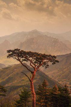 Seoraksan National Park, S Korea