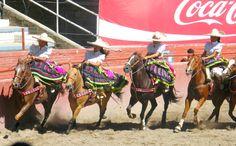 Mexican charras