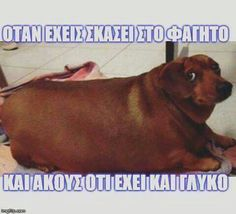 quotes, στοιχακια, and greek+quotes image