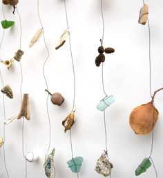 from rawbonestudio.com/blog  bits of bone, wasp nest, beach glass and pottery, seed pods and silk worm cocoons. What do you collect?