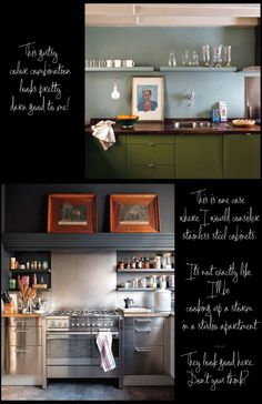 Stainless-Steel-Kitchen-Cabinets-Green-Kitchen-Cabinets