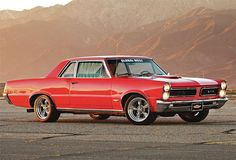 Possibly the one to start the American muscle car craze, the Goat or 1965 Pontiac Tempest GTO.