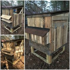 Here is the other side showing the nesting box.