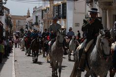 Paseo de Caballos, Feria 2012