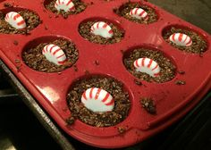 Peppermint Bran Flax Carrot and Sweet Feed horse treats recipe, by Do It Yourself Horse Ownership Blog.