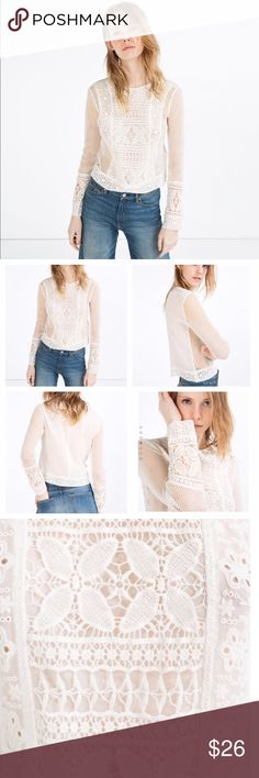 Zara Lace Contrast Cropped Blouse Long sleeve semi sheer top with lace and mesh detail. Measurements in pictures. In great condition with no holes or stains. Round high neck and cropped length. Outer shell: 100% cotton, lining: 100% polyester. Spring 2016 collection. Zara Tops