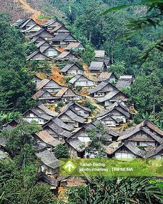 Tanah Baduy August 31 - September 01, 2013 Link : http://triptr.us/ue