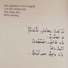 Nizar Qabbani Love Quotes In Arabic Sweet Love Words, Pretty Words, Cool Words, Arabic English Quotes, Arabic Love Quotes, Islamic Quotes, Pretty Quotes, Amazing Quotes, Words Quotes