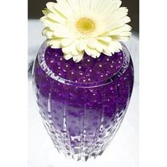 c7926895b Purple Water Gel Beads Packet Amazing water storing beads start out as tiny  hard pellets, just add water and they will expand into beautiful glimmering