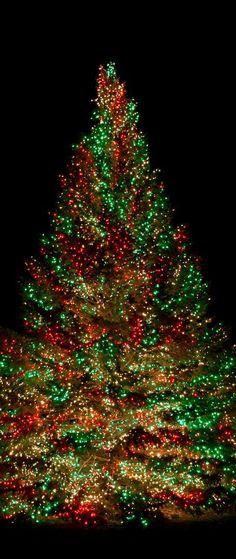 Merry Christmas! Best Christmas Lights #Tumblr bestchristmaslights.tumblr.com
