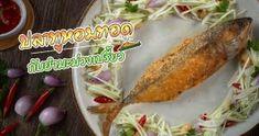 ปลาทูต้ม หลากสูตรอาหารไทยโปรตีนแน่นซดน้ำดังซู้ด Fusion Food, Chicken, Meat, Vegetables, Vegetable Recipes, Veggies, Kai