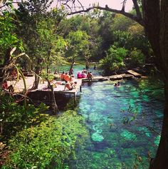 Cenote Azul in Tulum Mexico is paradise.                                                                                                                                                                                 More