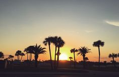 Capture the sun and the palm trees Tumblr Summer Pictures, Palm Trees, Celestial, Vacation, Sunset, Outdoor, Palm Plants, Outdoors, Vacations