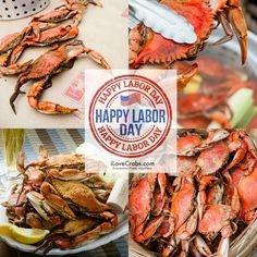 """share if You Absolutely """"LOVE"""" Maryland Blue Crabs! Share your favorite Labor Day or Summertime memories feasting on crabs with friends and family. www.iLoveCrabs.com. #iLoveCrabs"""
