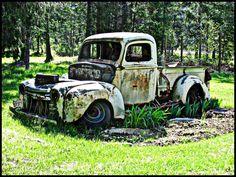 Merveilleux Truck Garden!