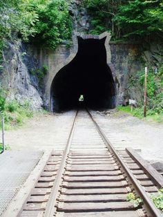 Katten-spoor-tunnel