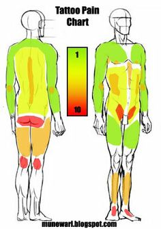 1000 images about pain charts how much does it hurt on for Most painful place to get a tattoo