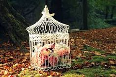 Resultado de imagen de jaulas decorativas vintage