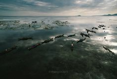 Tam Giang Lagoon, Hue A look at Vietnam, from the sky Vietnam, Human Condition, Back In Time, Water Lilies, Hue, Mountains, Landscape, World, Travel