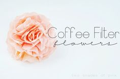 Two Shades of Pink: Coffee Filter Flowers Tutorial