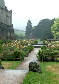 Buckland Abbey Garden, Devon, UK, by Sabina Kulicka Formal Gardens, Outdoor Gardens, Between Two Worlds, Around The Worlds, Landscape Design, Garden Design, Parks, England And Scotland, Dream Garden