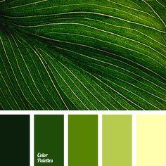 Color Palette #3226
