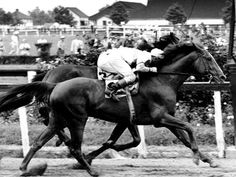 Seabiscuit vs. War Admiral - in what was called the Match Race of the Century, Seabiscuit beat War Admiral (who was a son of Man O' War) by 4 lengths