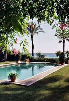 Palm Beach Backyard