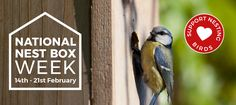 Get free Outlook email and calendar, plus Office Online apps like Word, Excel and PowerPoint. Sign in to access your Outlook, Hotmail or Live email account. Bird Food, Online Apps, Nesting Boxes, Calendar, Free, Life Planner, Bird Houses, Nests, Chicken Coops