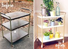 Check out the cool plant cart salvaged from a 1st time dumpster dive.