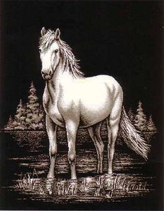 A beautiful white horse printed in the Majestic Horse Blanket Throw. This is a sure standout.