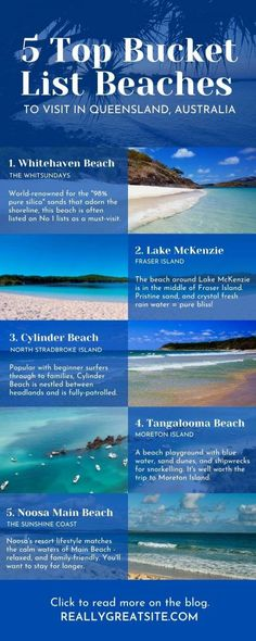 Infographics can be easy! In this post I show you how to easily create Canva Infographics. I share tips for creating awesome infographics and how to use Canva Infographic Templates to create them quickly and easily! #CanvaTemplates #CanvaInfographics #Infographics #Canva #Tourism The Whitsundays, Stradbroke Island, Infographic Templates, Infographics, Fraser Island, Snorkelling, Playground, Tourism, Canvas