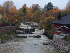 Autumn in Helsinki Helsinki, Autumn, River, Nature, Outdoor, Outdoors, Naturaleza, Fall Season, Fall