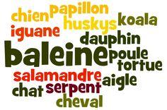 Créons de belles affiches semblables avec les mots de vocabulaire de chaque…