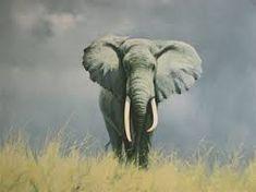 David Shepherd wildlife artist