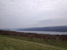 theBrideScoop ~ Beth Smith, our TravelWineChick, shares her thoughts on Finger Lakes, NY ~ scenery, people, food and of course wine!