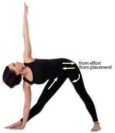 """There is no such thing as """"gold standard"""" when it comes to alignment in yoga poses - What is your intention with each pose?"""