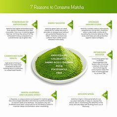 How much matcha tea per day can you drink? How much matcha is too much? Matcha Green Tea Benefits, Oolong Tea Benefits, Matcha Green Tea Powder, Green Powder, Green Tea Detox, Best Green Tea, Green Teas, Organic Greens Powder, Bebidas Detox