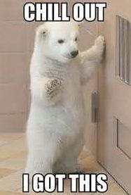 Bear I got  this