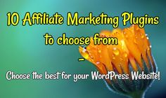 10 Affiliate Marketing Plugins to choose from - Choose the best for your WordPress Websi...