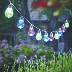 Cole and Bright Solar LED Festoon Light – 10 Lights