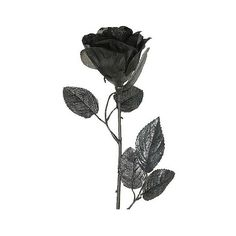 Halloween Glitter Rose, Black (16 BRL) ❤ liked on Polyvore featuring home, home decor, holiday decorations, flowers, halloween, black, fillers, decor, flower home decor and halloween home decor