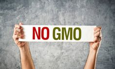 Tell Starbucks to Stop Supporting Genetically Modified Foods--from international best-selling author of 60 SECONDS TO SLIM & WEEKEND WONDER DETOX, Dr. Michelle Schoffro Cook, PhD, DNM, ROHP.  http://www.DrMichelleCook.com