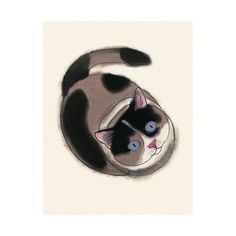 Cat art illustration tortoiseshell cat   You are by matouenpeluche, $6.50