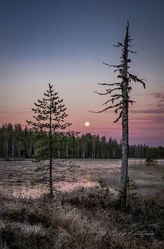 Asko Kuittinen Suomalainen maisema Finland