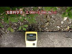 衝撃の首都放射能汚染 日本崩壊までのカウントダウン - YouTube