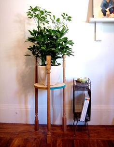 35 Cozy Diy Indoor Plant Stands Ideas For Fresh Home Inspiration - Do you know that you can add a more amazing touch to your already beautiful plants? By incorporating Indoor Plant Stands, you can give life and liveli. Diy Plant Stand, Plant Stands, Best Indoor Plants, Tiny Spaces, Diy Home Decor Projects, Stand Design, Plant Holders, New Room, Diy Stair